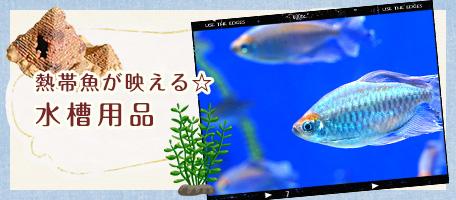 aqua_harf_banner